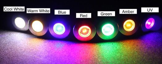 Color Options for LED Bolt